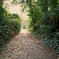 a path in Brussels
